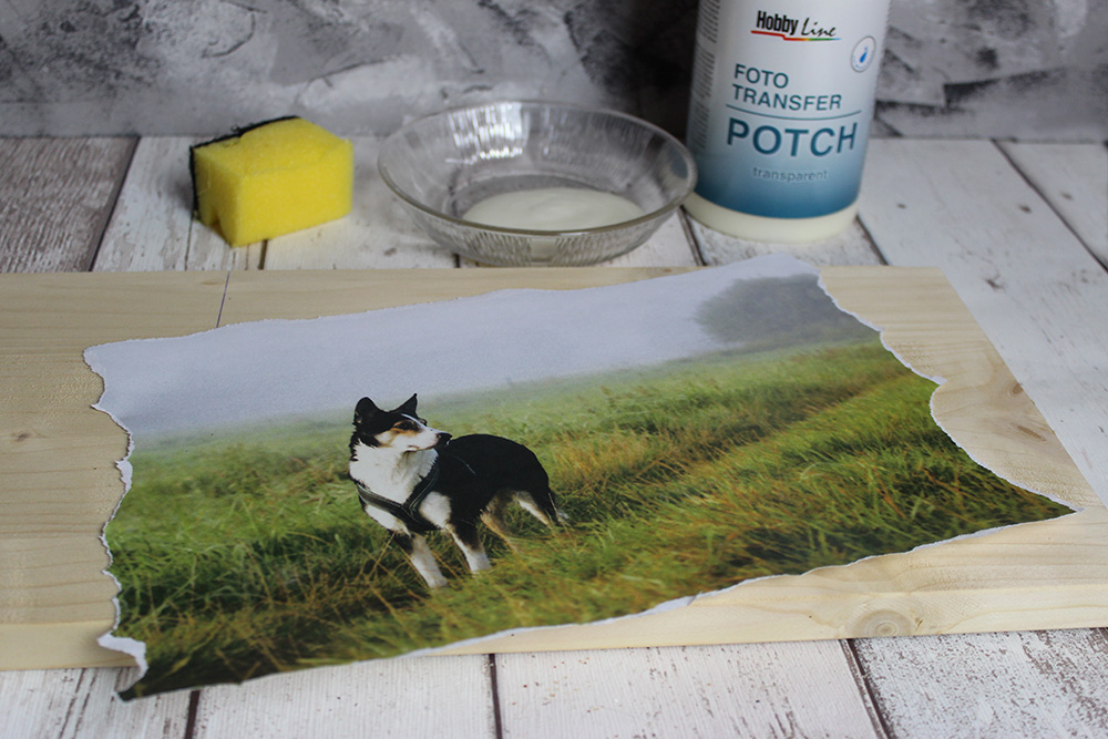 Foto Transfer Potch, Foto, Holz und Schwamm