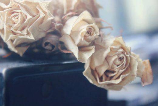 Bloggen über psychische Probleme